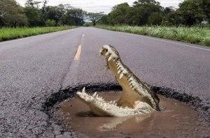 Составлен рейтинг самых небезопасных дорог Европы
